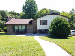 Photo of 800 James Drive, Lenoir City, TN 37772 (MLS # 1051804)