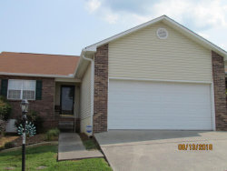 Photo of 225 Executive Meadows Drive, Lenoir City, TN 37771 (MLS # 1052719)