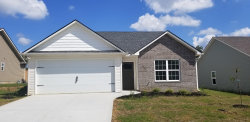 Photo of 3644 Flowering Vine Way, Knoxville, TN 37917 (MLS # 1053127)