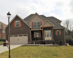 Photo of 439 Britts Drive, Lenoir City, TN 37772 (MLS # 1058472)