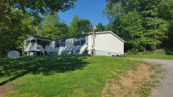 Photo of 1038 Old Lake City Hwy, Clinton, TN 37716 (MLS # 1061173)