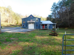 Photo of 3778 Henry Town Rd, Sevierville, TN 37876 (MLS # 1063841)