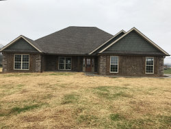 Photo of 3805 Coulter View Lane, Maryville, TN 37804 (MLS # 1063911)