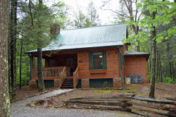 Photo of 221 Fern Ridge Rd, Townsend, TN 37882 (MLS # 1065353)