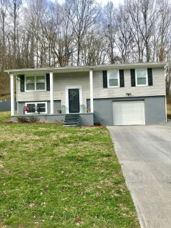 Photo of 144 Cove Circle, Caryville, TN 37714 (MLS # 1065968)