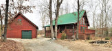 Photo of 335 Goose Point, Spring City, TN 37381 (MLS # 1067009)