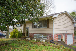 Photo of 8705 Dolph Drive, Knoxville, TN 37931 (MLS # 1067252)
