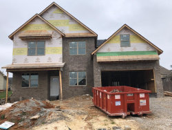 Photo of 10385 Ivy Hollow Drive, Knoxville, TN 37931 (MLS # 1067337)