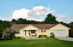 Photo of 1170 Eagle View Drive, Kodak, TN 37764 (MLS # 1069027)