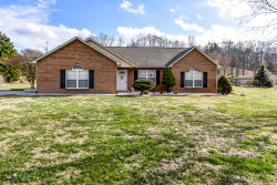 Photo of 824 Alley Dr. Drive, Friendsville, TN 37737 (MLS # 1069250)