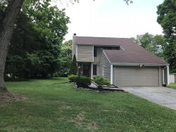 Photo of 1310 Mimosa Drive, Louisville, TN 37777 (MLS # 1069841)