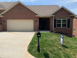 Photo of 3875 Spyglass Drive, Maryville, TN 37801 (MLS # 1070306)