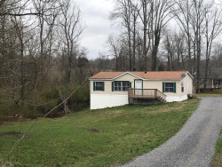 Photo of 3036 Mccarty Rd, Louisville, TN 37777 (MLS # 1071820)