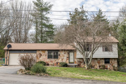 Photo of 905 Danville Circle, Knoxville, TN 37923 (MLS # 1073226)