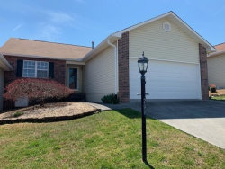 Photo of 209 Executive Meadows Drive, Lenoir City, TN 37771 (MLS # 1075264)