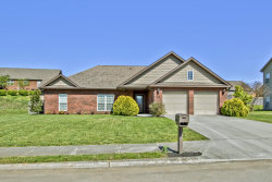 Photo of 2618 Mildred Meadows Drive, Maryville, TN 37804 (MLS # 1076201)