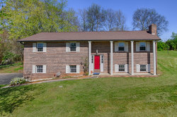 Photo of 2550 Avery Circle 1, Lenoir City, TN 37772 (MLS # 1076380)