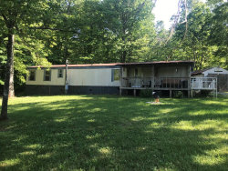 Photo of 554 Catoosa Canyon Drive, Crossville, TN 38571 (MLS # 1080729)