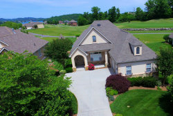 Photo of 219 White Hawk Drive, Vonore, TN 37885 (MLS # 1081274)