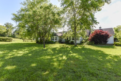 Photo of 734 Clifford Russell Rd, Maryville, TN 37801 (MLS # 1084156)