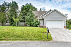 Photo of 2953 Titanium Lane, Knoxville, TN 37918 (MLS # 1087249)