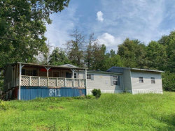 Photo of 891 Dry Creek Road, Tellico Plains, TN 37385 (MLS # 1089564)