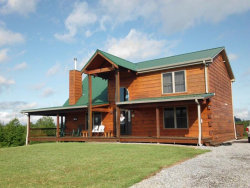 Photo of 241 Jones Drive, Tellico Plains, TN 37385 (MLS # 1090193)