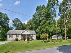 Photo of 407 Sable Rd, Spring City, TN 37381 (MLS # 1090702)