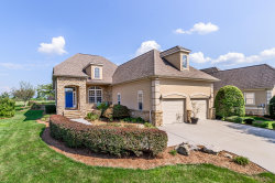 Photo of 240 Goldcrest Drive, Vonore, TN 37885 (MLS # 1090931)