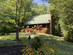 Photo of 3540 Ginseng Way, Sevierville, TN 37862 (MLS # 1091600)