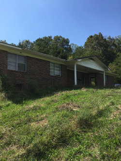Photo of 498 Old State Rd, Tellico Plains, TN 37385 (MLS # 1093480)