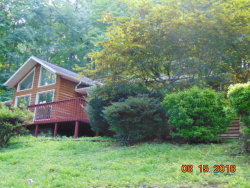 Photo of 766 Poplar Creek Rd, Oliver Springs, TN 37840 (MLS # 1097152)