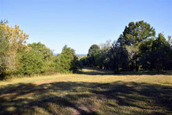 Photo of 481 Mccustion Cemetery Rd, Spring City, TN 37381 (MLS # 1097172)