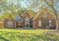 Photo of 2445 Hardin Farms Lane, Knoxville, TN 37932 (MLS # 1100454)