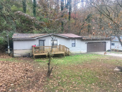 Photo of 4259 Wrights Ferry Rd, Louisville, TN 37777 (MLS # 1101785)