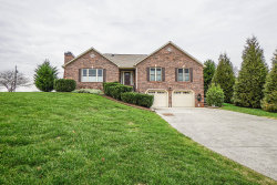 Photo of 481 Wilaway Rd, Maryville, TN 37801 (MLS # 1102386)