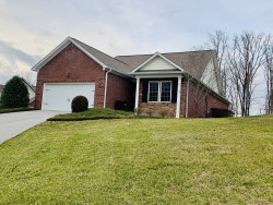 Photo of 2202 Mountain Drive, Lenoir City, TN 37772 (MLS # 1104829)