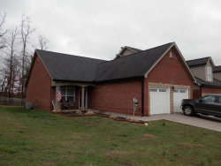 Photo of 541 Jacksonian Way, Lenoir City, TN 37772 (MLS # 1105035)