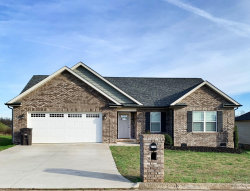 Photo of 2144 Olivia Circle, Loudon, TN 37774 (MLS # 1105349)