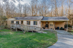 Photo of 1178 Laurel Bluff Rd, Kingston, TN 37763 (MLS # 1105635)