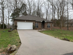 Photo of 127 Kawatuska Way, Loudon, TN 37774 (MLS # 1105781)