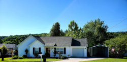 Photo of 6531 Orchard Creek Lane, Knoxville, TN 37918 (MLS # 1118653)