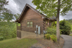Photo of 570 Country Oaks Drive, Pigeon Forge, TN 37863 (MLS # 1118743)