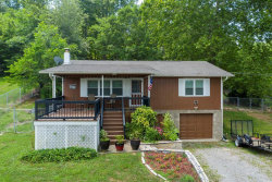 Photo of 864 Scenic Lakeview Drive, Spring City, TN 37381 (MLS # 1123060)