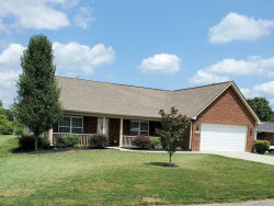 Photo of 210 Summitt Drive, Maryville, TN 37804 (MLS # 1125703)