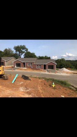 Photo of 870 Spring Park Rd, Knoxville, TN 37914 (MLS # 1130406)