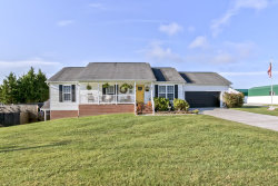 Photo of 610 Baldwin Meadows Way, Friendsville, TN 37737 (MLS # 1130978)