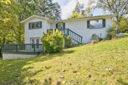 Photo of 5321 W Martin Mill Pike, Knoxville, TN 37920 (MLS # 1136817)