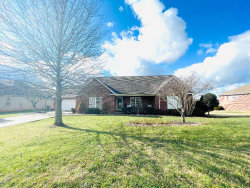 Photo of 3932 Leyte Drive, Maryville, TN 37801 (MLS # 1140188)