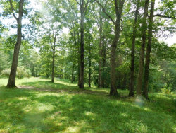 Photo of 6402 Brimstone Rd, Robbins, TN 37852 (MLS # 1013871)